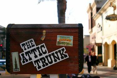 Attic Trunk